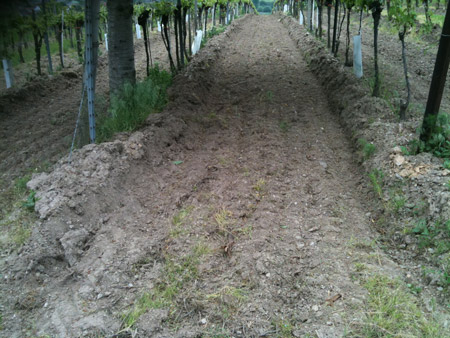 too intense ploughing
