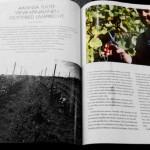 herrenhof proresto magazine