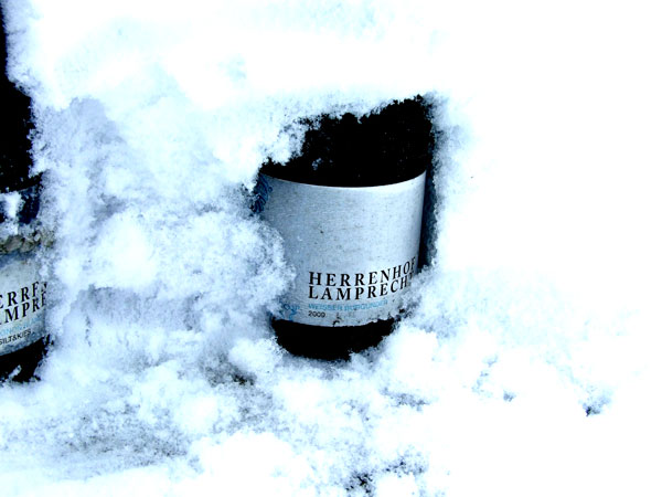 Herrenhof Bottle in Snow