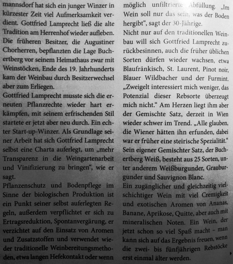 Artikel_dieSteirerin_2013